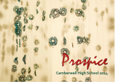 Prospice 2014